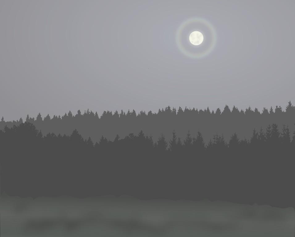 Kunst_Experimente_Moonlight.png