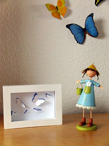 A framed set of butterflies