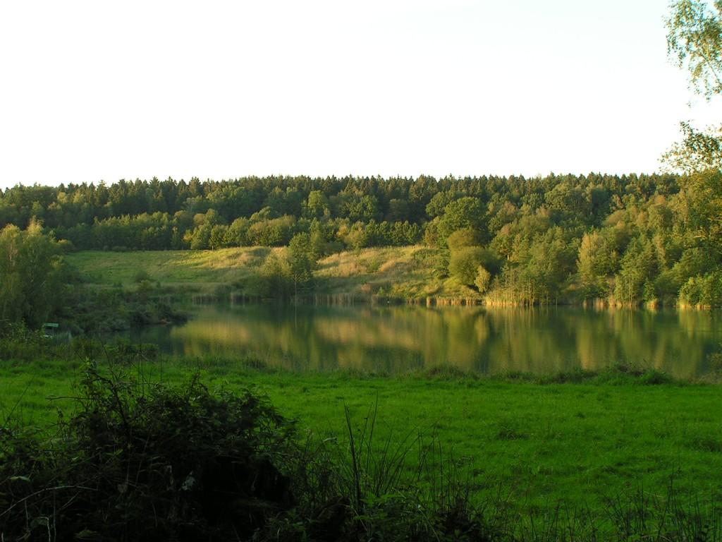 Foto_Natur_Spiegelsee.jpg